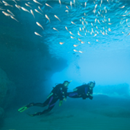 PADI Specialty Instructor Course in Pattaya